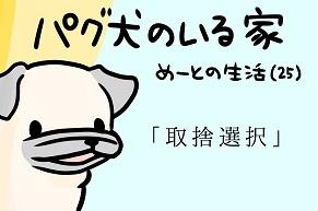 【パグ犬のいる家】めーとの生活(25)「取捨選択」