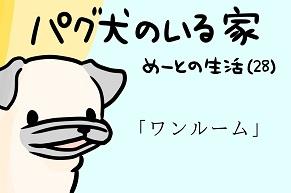 【パグ犬のいる家】めーとの生活(28)「ワンルーム」